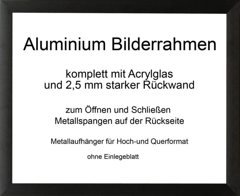 toronto aluminium bilderrahmen mit r ckwand und acrylglas. Black Bedroom Furniture Sets. Home Design Ideas