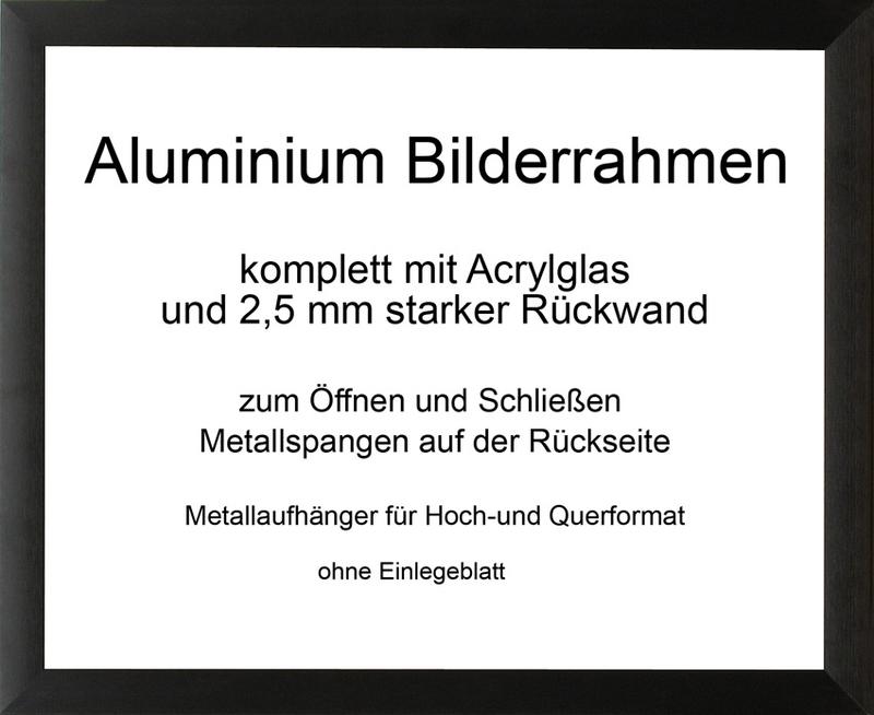 toronto aluminium bilderrahmen mit r ckwand und acrylglas normal. Black Bedroom Furniture Sets. Home Design Ideas
